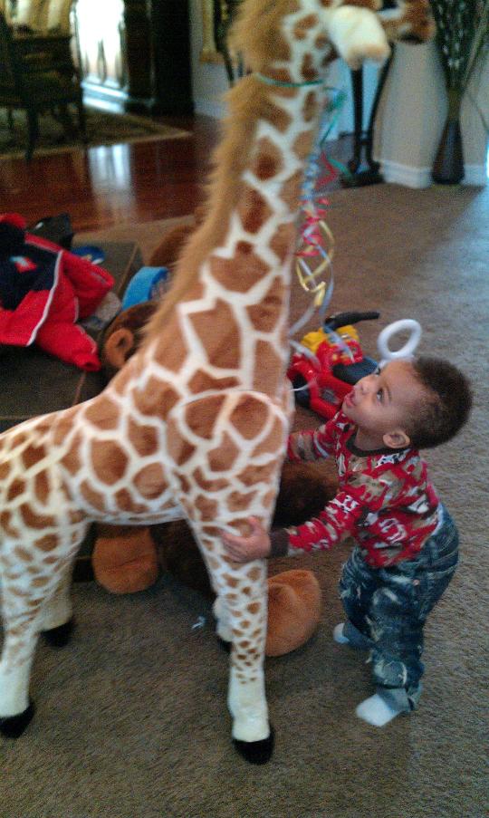 Dj Loves Stuffed Animals
