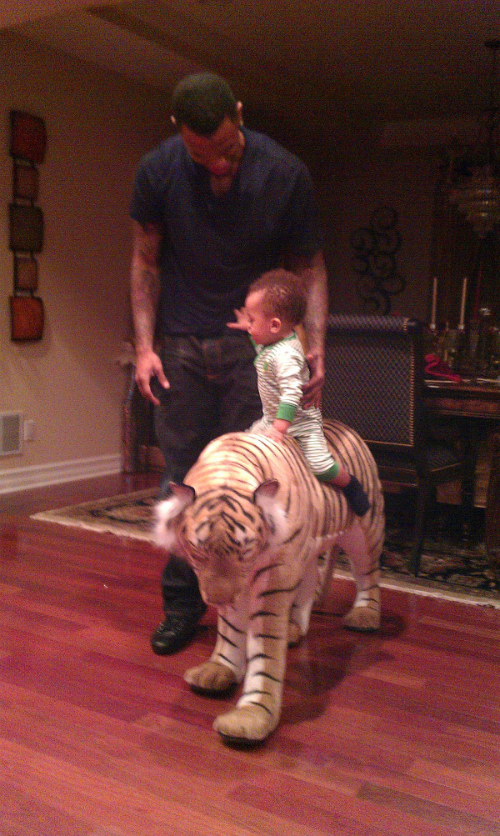 This Tiger looks too real and wasn't Dj's favorite.