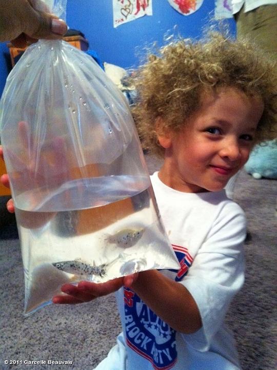 Jaid with his goldfish gift