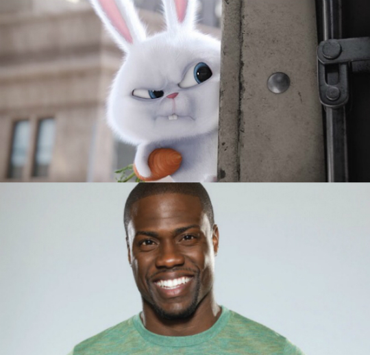 movie watch kevin hart stars in 39 the secret life of pets 39. Black Bedroom Furniture Sets. Home Design Ideas
