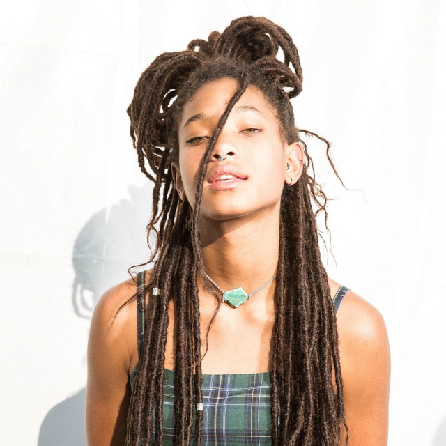 Willow Smith Rocked Out At Afro Punk 2017