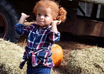 CELEBS AND THEIR KIDS HEAD TO THE PUMPKIN PATCH