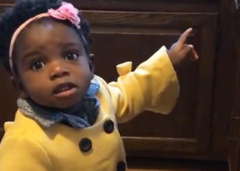 ADORABLE! LITTLE GIRL TRIES REPEATEDLY TO GET ALEXA TO PLAY BABY SHARK